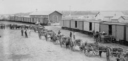 loading wagons for Edmonton at Calgary 1888